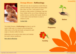 Orange Bloom home page